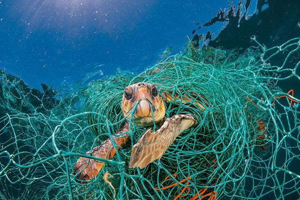 Inquinamento in mare